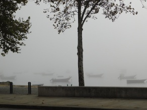 Porto Fog