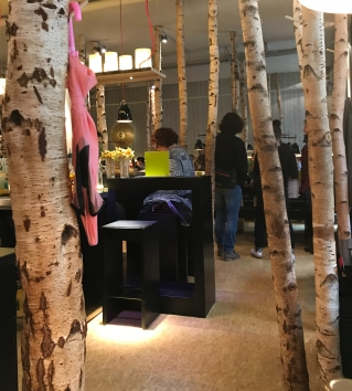 Birch Trees used as coat hangers